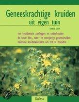 Geneeskrachtige kruiden uit eigen tuin
