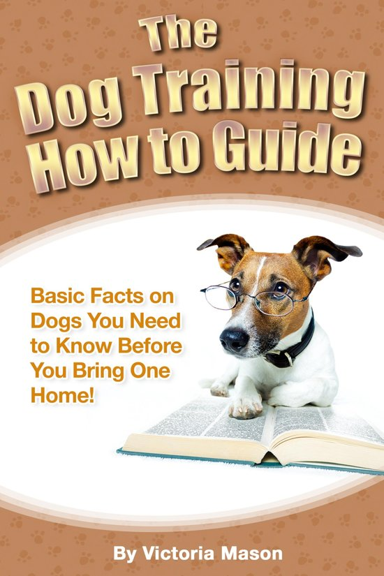 Facts You Need to Know For Dog Training