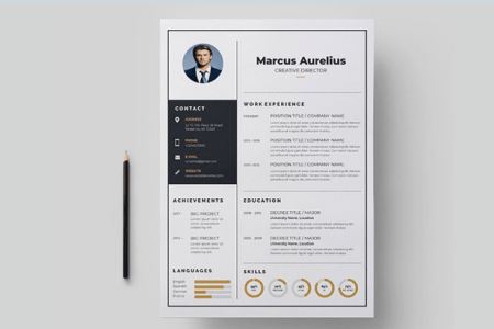 65 Eye Catching CV Templates For MS Word   Free To Download Elegant Resume Template