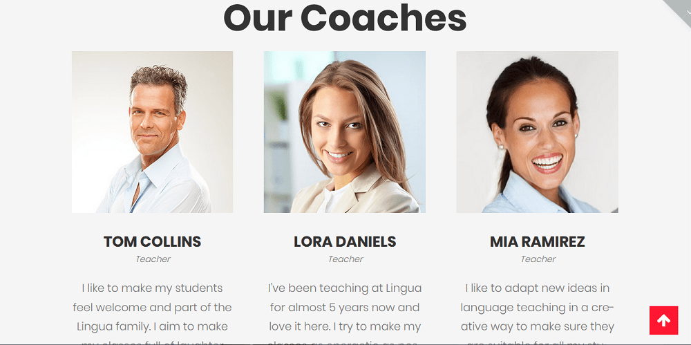 spellolite coaches