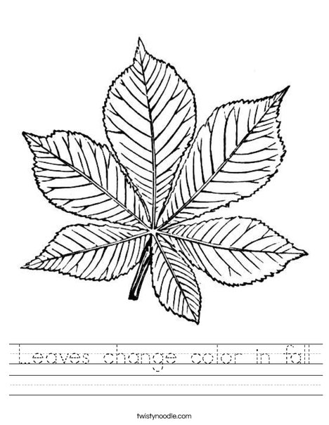 leaves change color in fall worksheet  twisty noodle