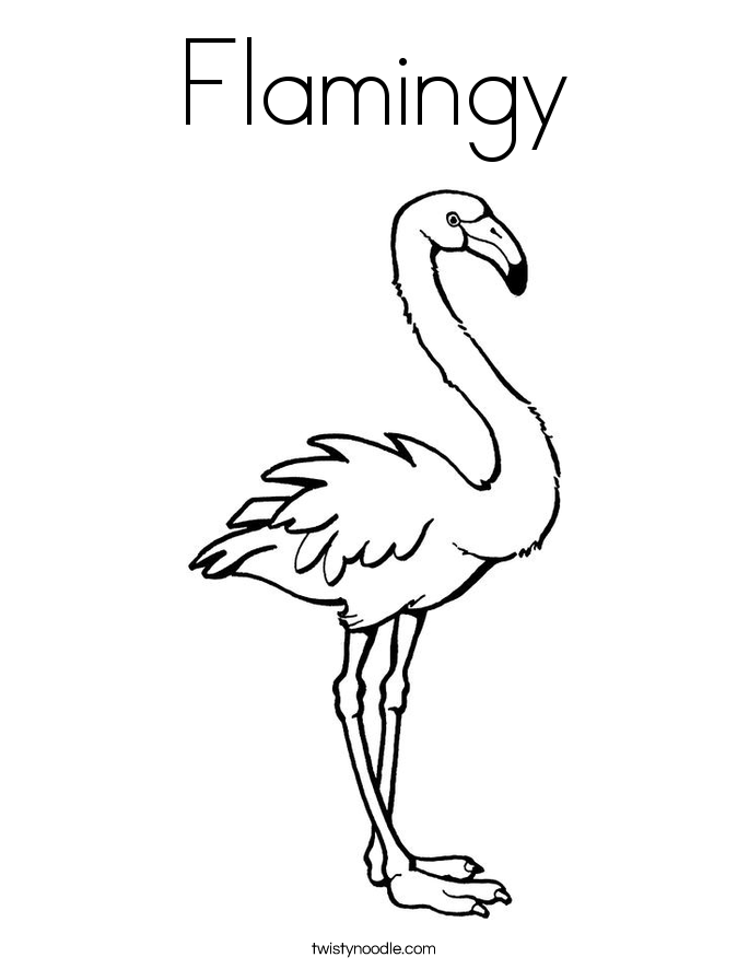 Flamingy Coloring Page Twisty Noodle