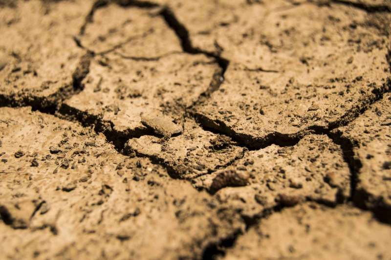 Close-up of dried, cracked earth.