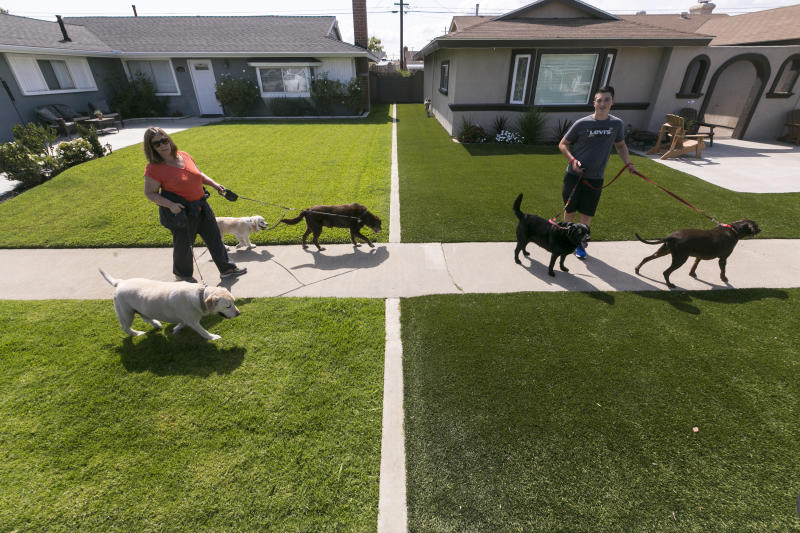 CORRECTS THE DATE TO VOTE TO FEB. 20, 2018, NOT MAY 18, 2016 - FILE - In this May 6, 2015, file photo, local resident Martha Mattison, left, helps out her son, Jacob with his dog walking business, as they walk past recently installed synthetic grass, seen at right, in Garden Grove, Calif. California water officials say they will consider dropping a mandate requiring conservation in the state's fifth year of drought. The State Water Resources Control Board on Tuesday, Feb. 20, 2018, will vote on whether to give local water districts control of setting their own conservation targets. (AP Photo/Damian Dovarganes, File)