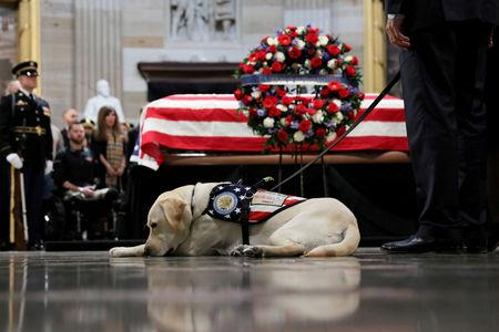 FILE PHOTO: Sully the service dog of former U.S. President George H.W. Bush lays in front of Bush's casket as it lies in state inside the U.S. Capitol Rotunda on Capitol Hill in Washington, U.S., December 4, 2018. REUTERS/Jonathan Ernst/File Photo