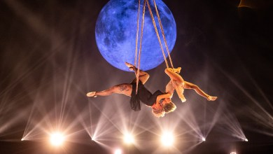 P!nk's 9-year-old daughter's aerial act is breakout moment of 2021 Billboard Music Awardst moment of the 2021 Billboard Music Awards