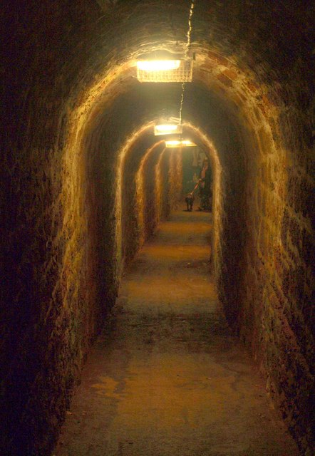 Tunnel to Ness Cove