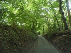 turville heath holloway