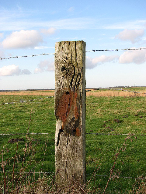 A well-weathered fence post