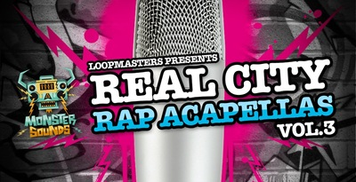 Real City Rap Acapellas Vol. 3