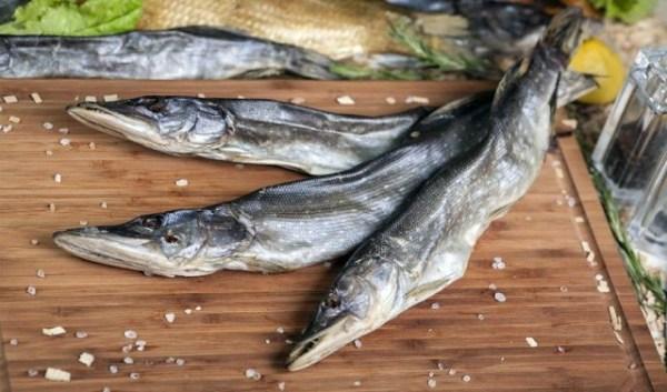 Отдых и рыбалка - ЯПлакалъ