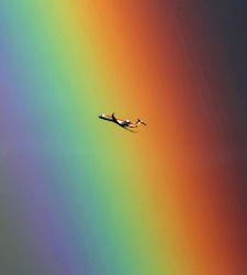 arcoiris-ap.jpg