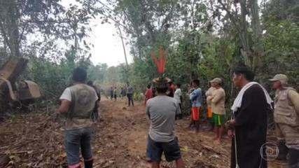 Indígenas do Brasil e do Peru estão denunciando desmatamento ilegal perto da fronteira