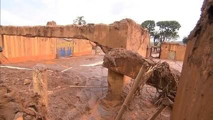 Tragédia em Mariana já é considerada o maior desastre ambiental de MG