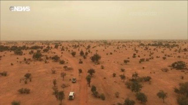 Grande Muralha Verde tenta conter o avanço do deserto do Saara