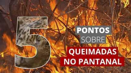 5 pontos sobre as queimadas no Pantanal