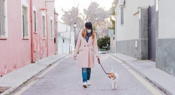 Consejos para cuidar a tu perro durante la cuarentena: paseos ...