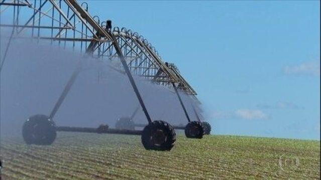 Reportagem de maio 2020 a irrigação ajuda produtores a aprimorar cultivo do feijão durante períodos de seca.