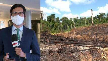 Ministério do Meio Ambiente suspende operações contra desmatamento e queimadas