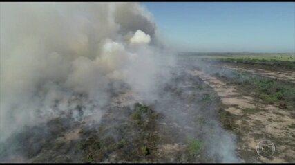 Pesquisadores ligam as queimadas no Pantanal ao desmatamento da Amazônia