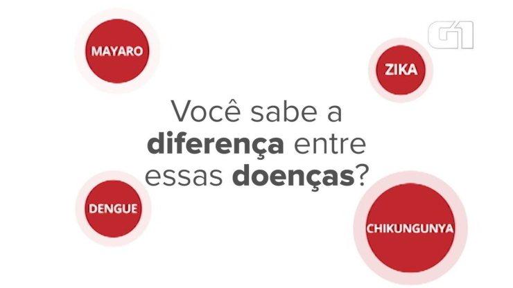 Veja a diferença entre as doenças dengue, zika, chikungunya e mayaro