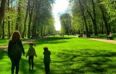 promenade_241409078 عادات يومية تحافظ على نشاط وحيوية الذاكرة المزيد