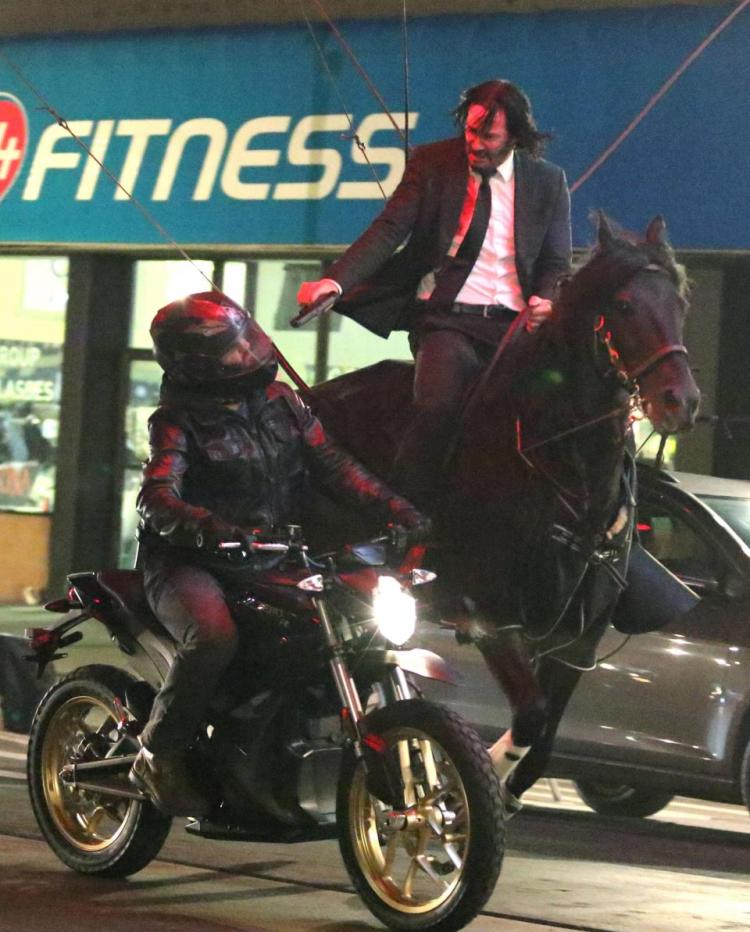 Image result for keanu reeves horse john wick 3