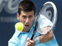Honeymoon over as Djokovic works for win