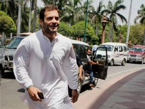 Adarch scam: NCP backs Rahul Gandhi's pitch for reconsidering report