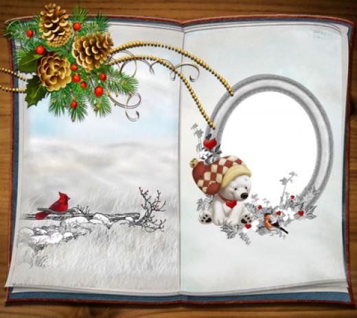 Custom Photo Christmas Cards Insert Photo Cards