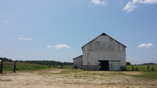 Day Trip: Amish Country in Ethridge, Tennessee – adventures