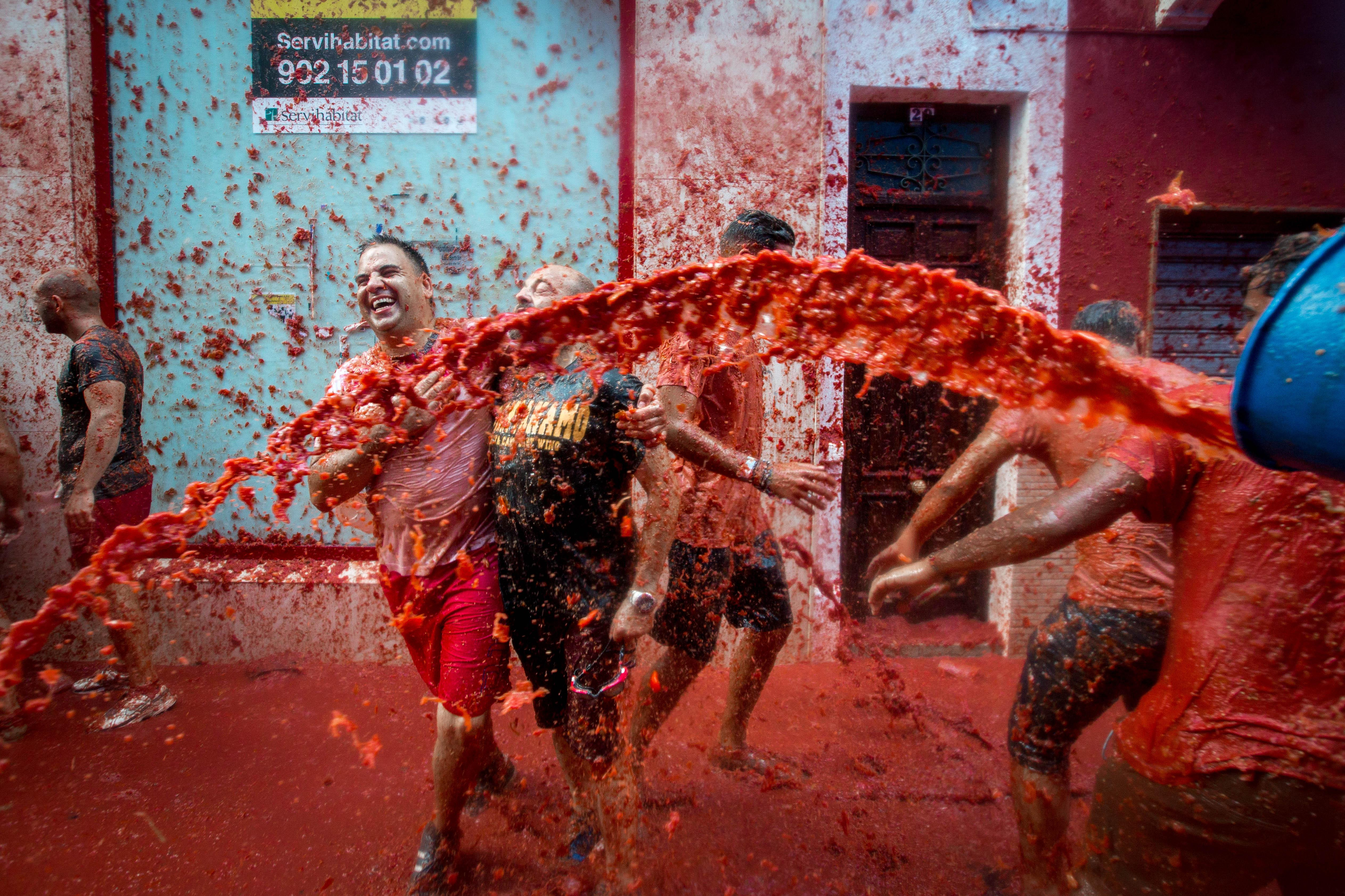 La Tomatina Festival Pictures Facts And History Of