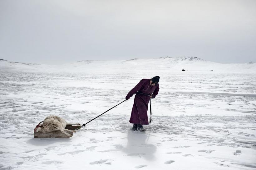 Environmental migrants: the last illusion. Ulaan Baator, Mongolia #07, 2011