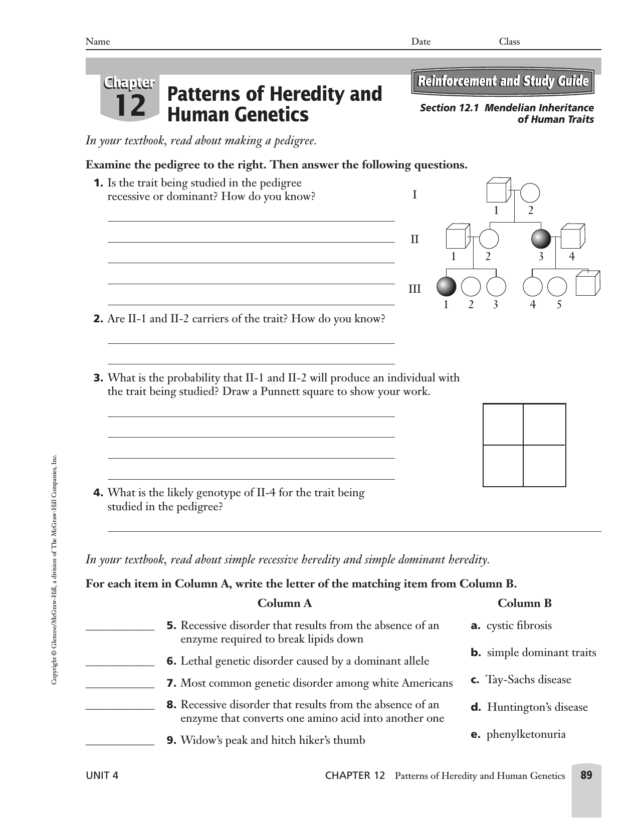 30 Chapter 12 Patterns Of Heredity And Human Genetics