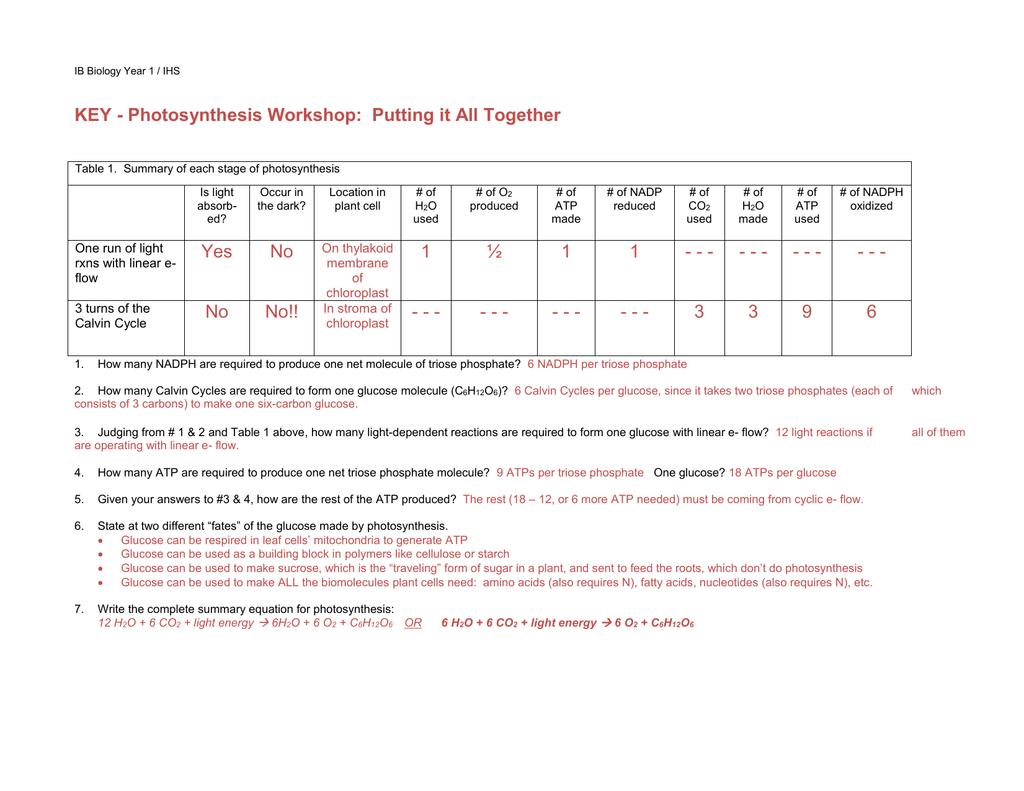 Atp Worksheet Answer Key