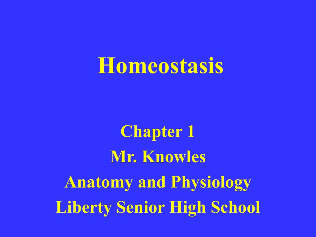 Anatomy And Physiology Homeostasis