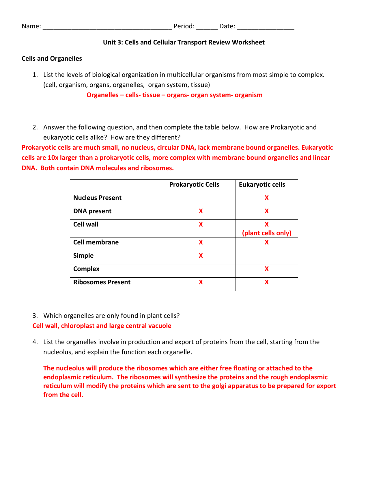 Digicollect Worksheet Answer Organelles In Eukaryotic
