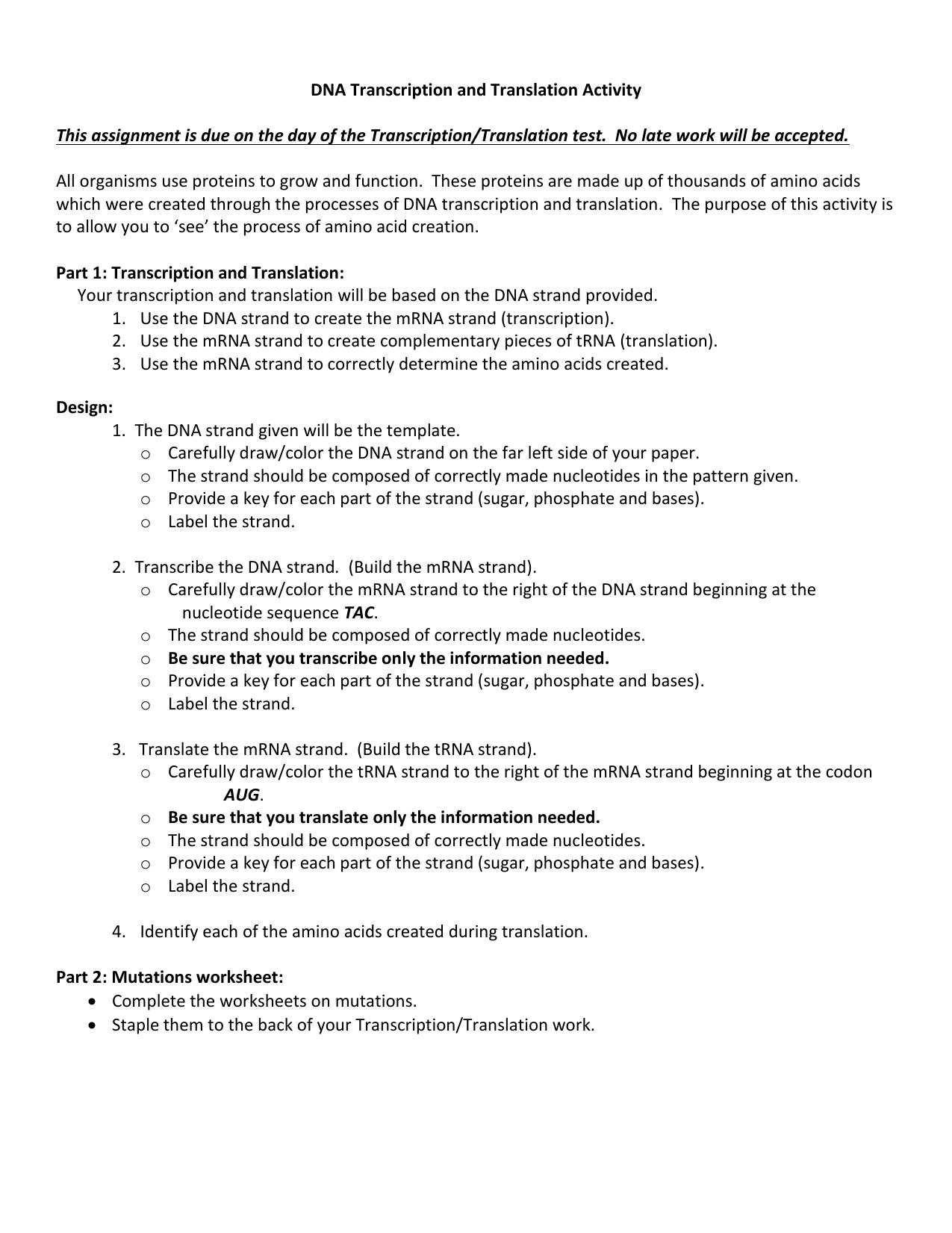 Transcription And Translation Practice Worksheet For Each