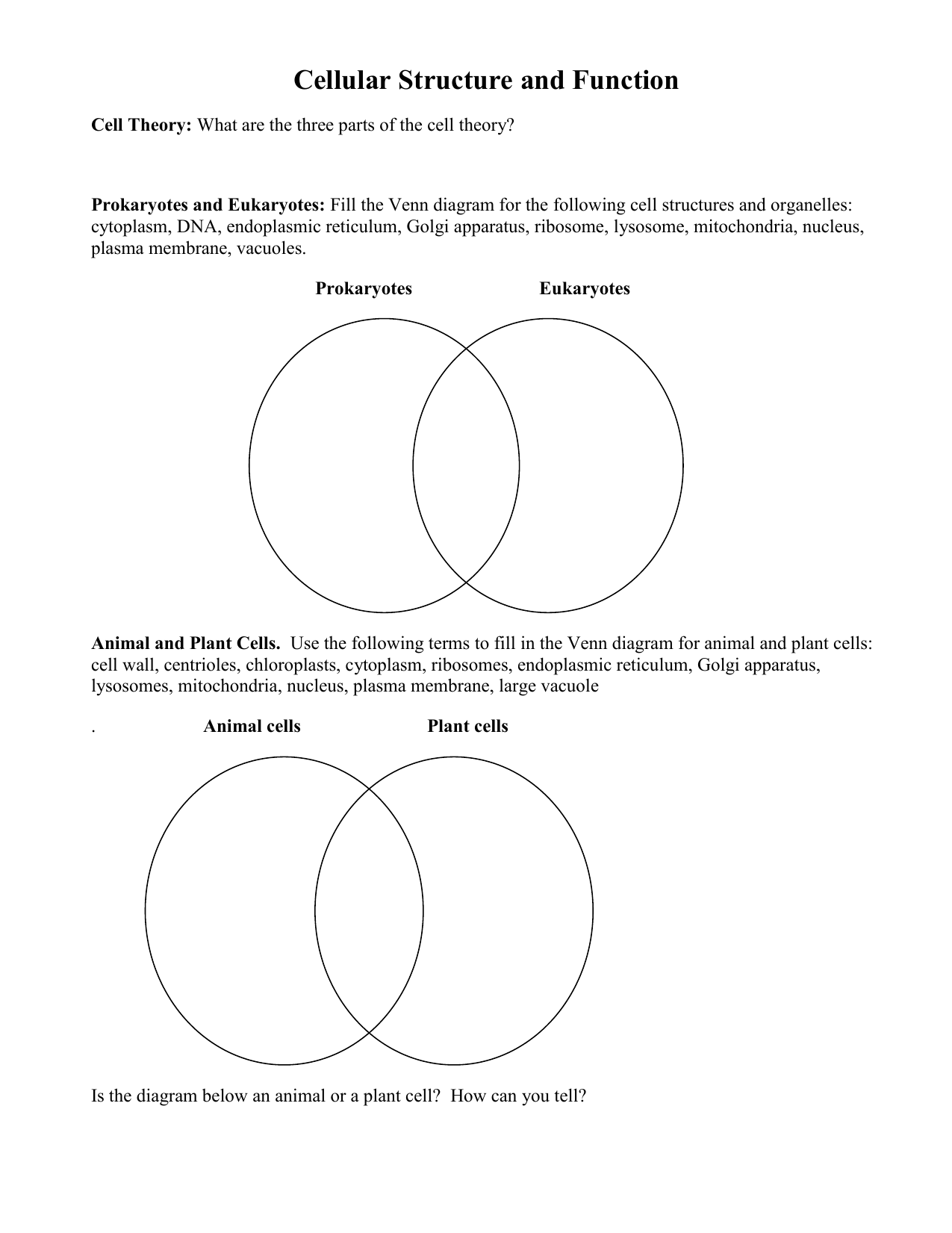 Prokaryotic And Eukaryotic Cells Venn Diagram Worksheet