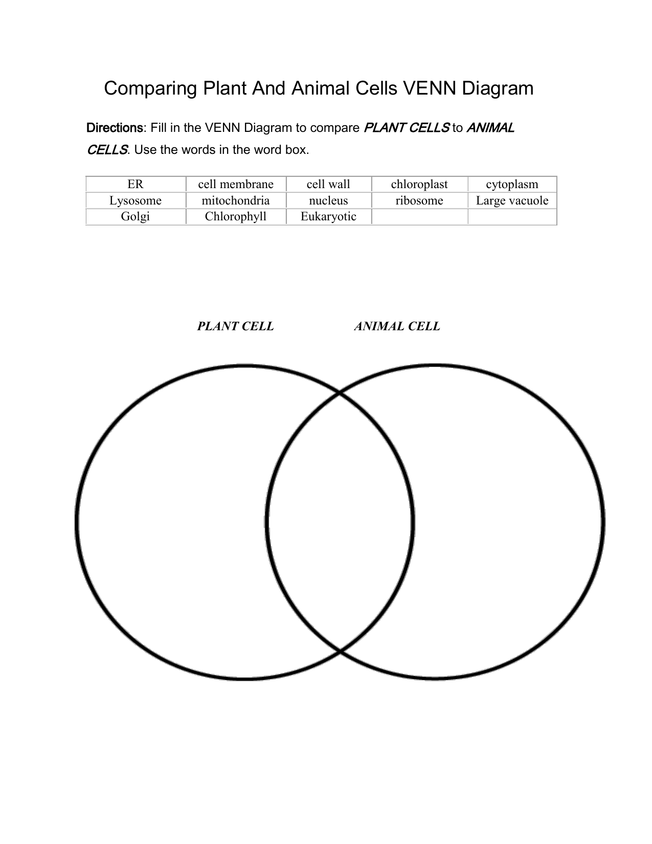 Cells Vs Viruses Venn Diagram Answers