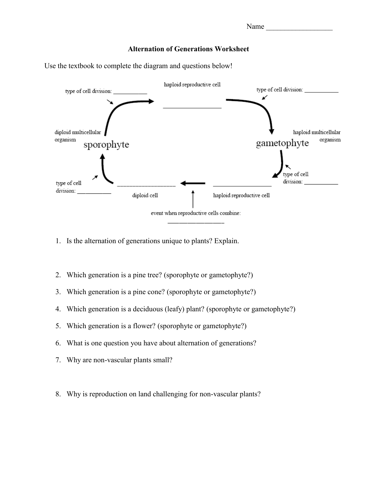 Worksheet Plants Worksheet Grass Fedjp Worksheet Study Site