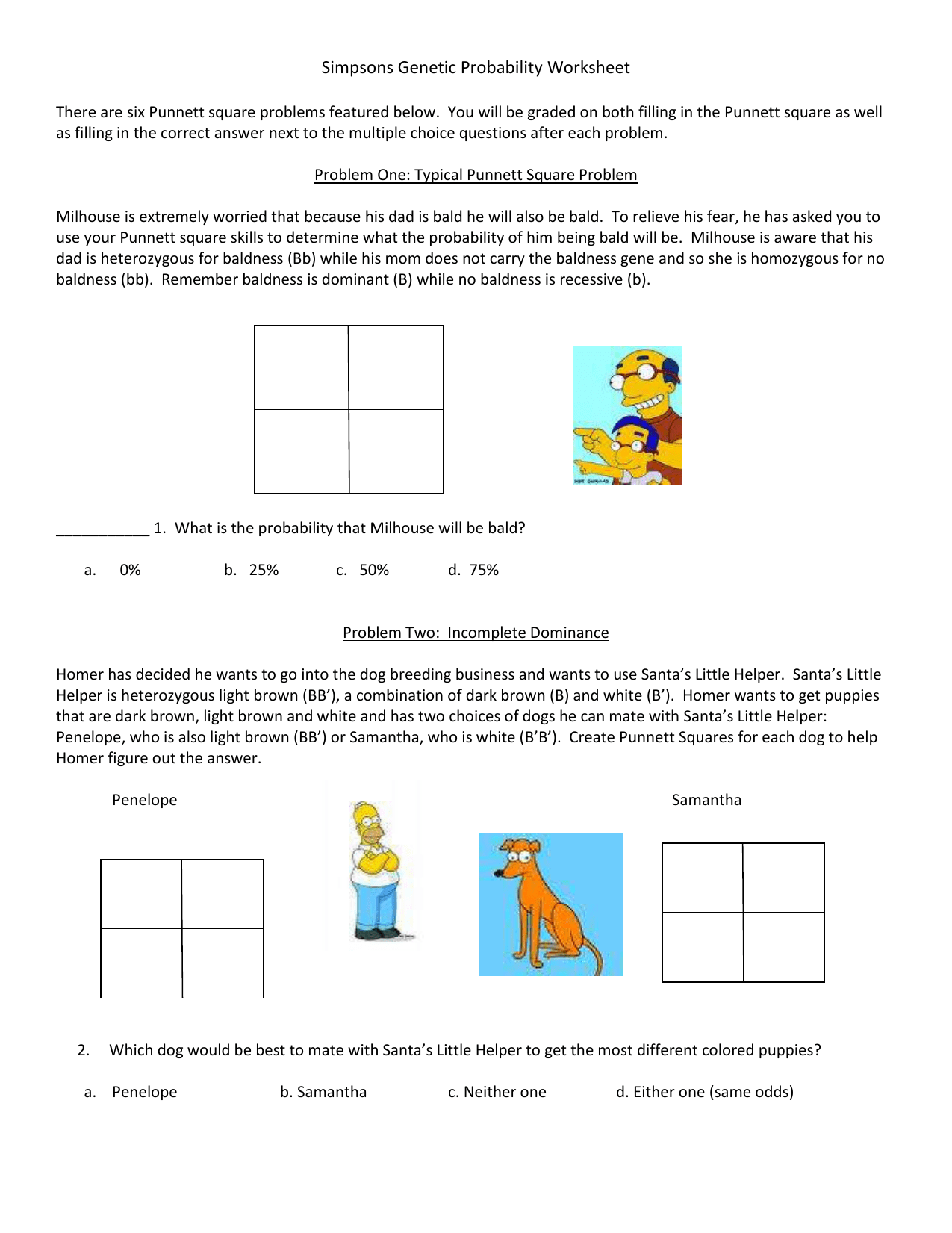 Printables Of Simpsons Genetics Worksheet