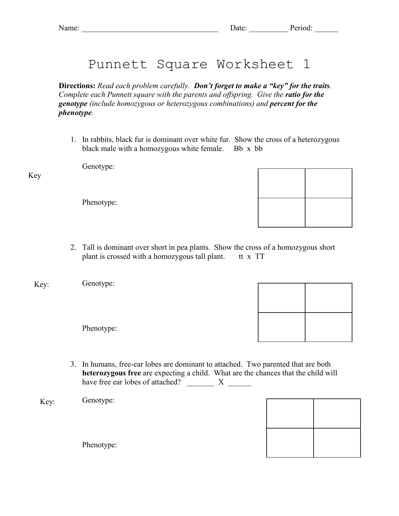 Punnett Square Worksheet 2 Answer Key