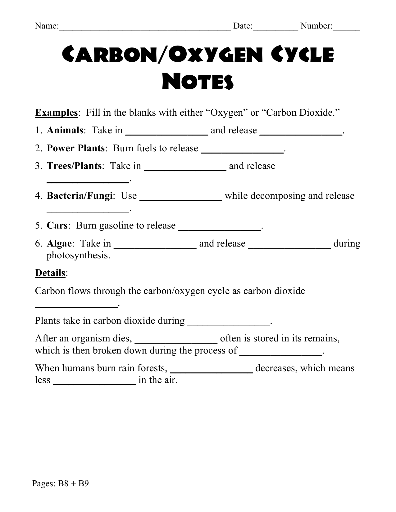 Carbon Oxygen Cycle Worksheet