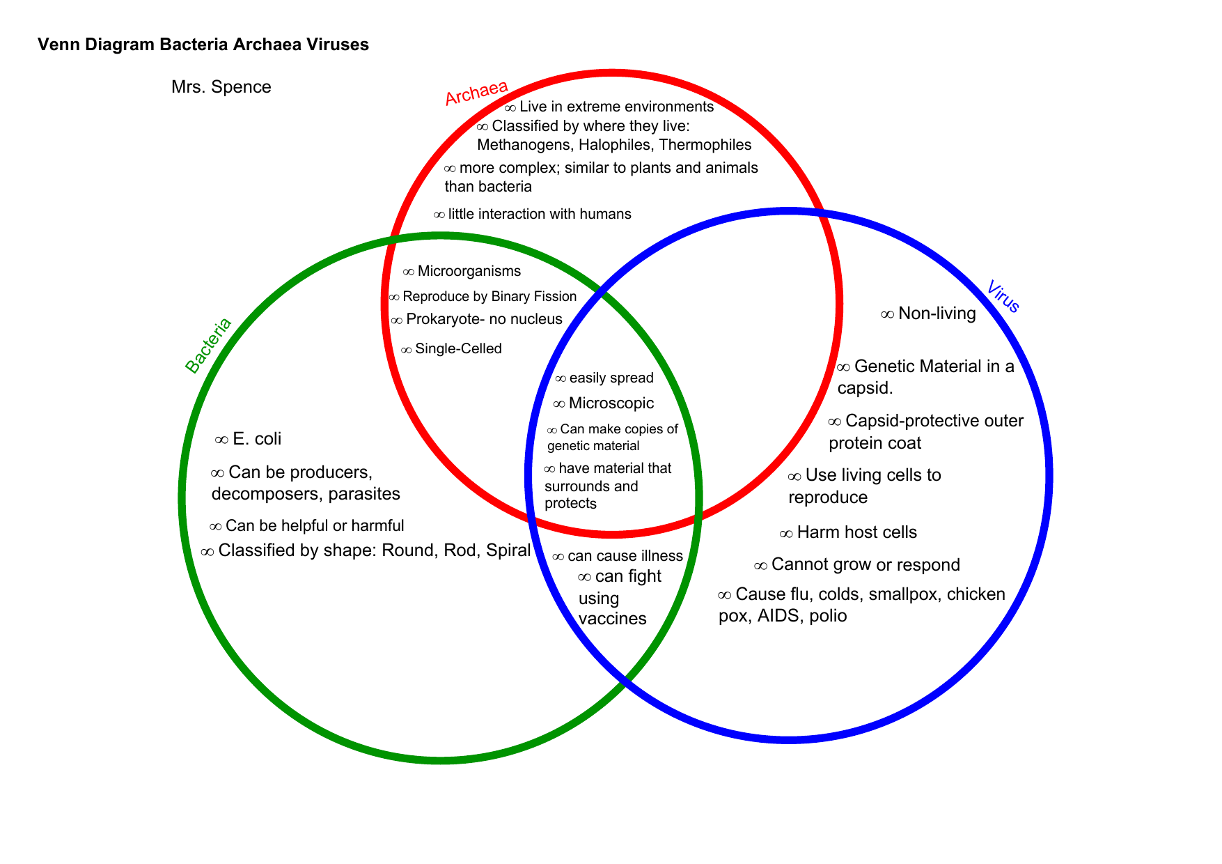 Venn Diagram Of Plant Animal And Bacterial Cells