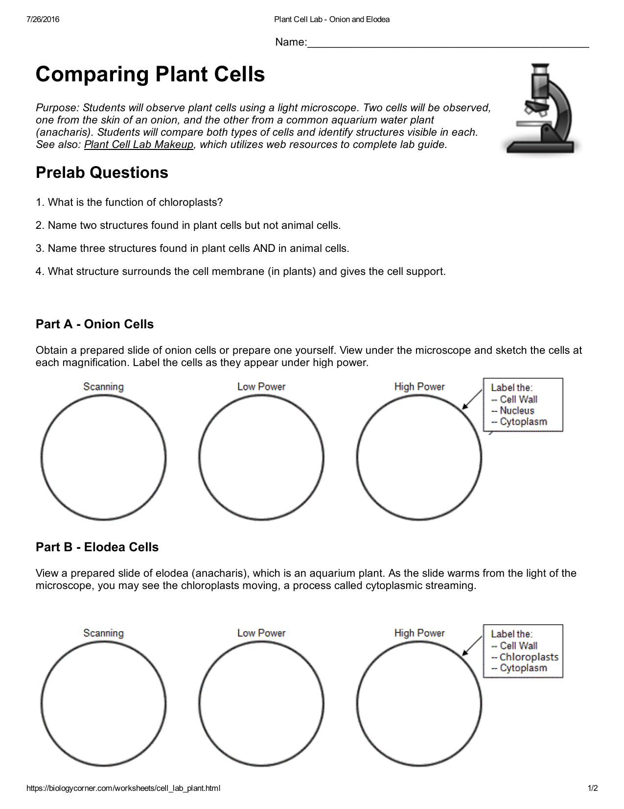 32 Label Plant And Animal Cells Worksheets