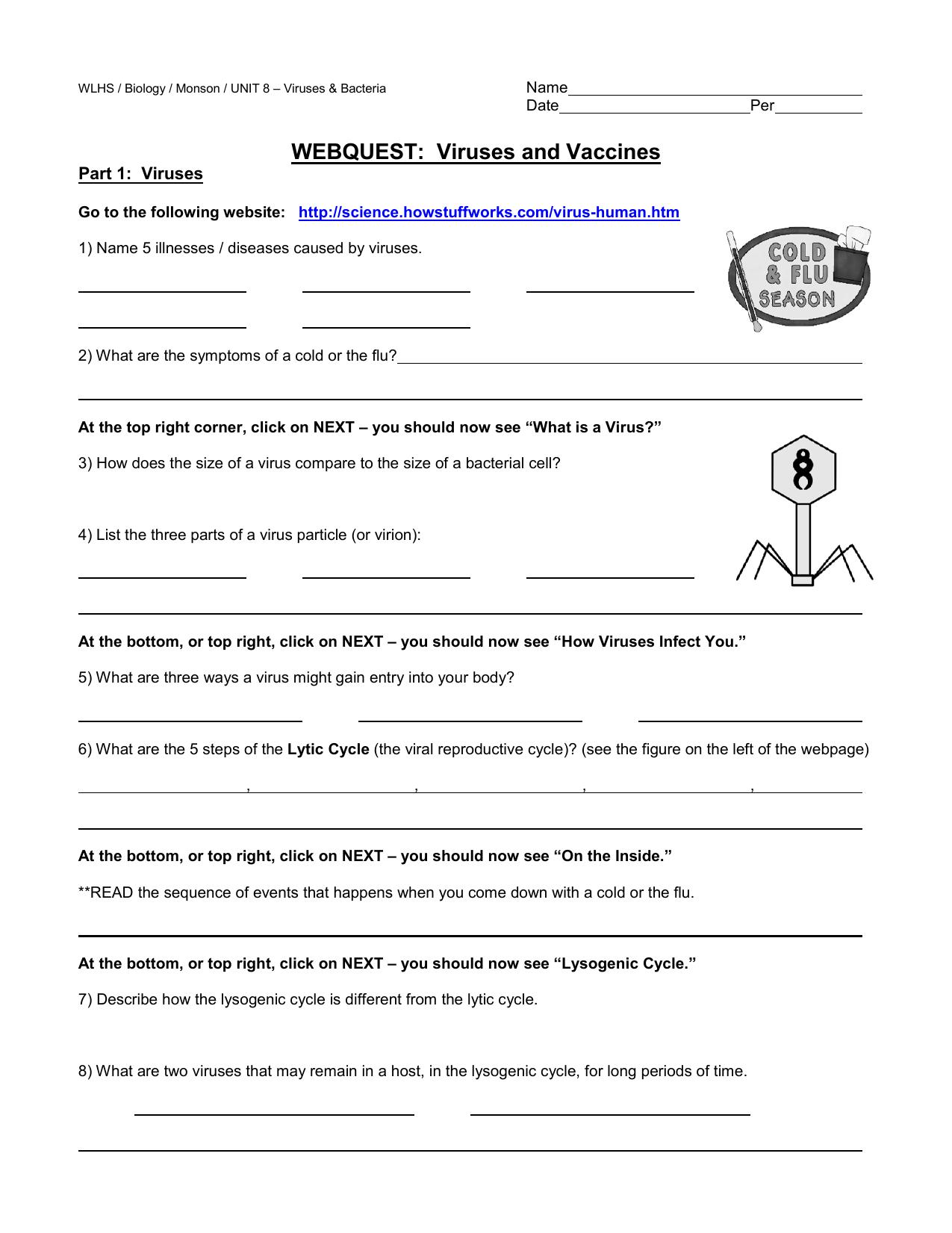 Unit 7 Worksheet 9 The Virus Answer Key