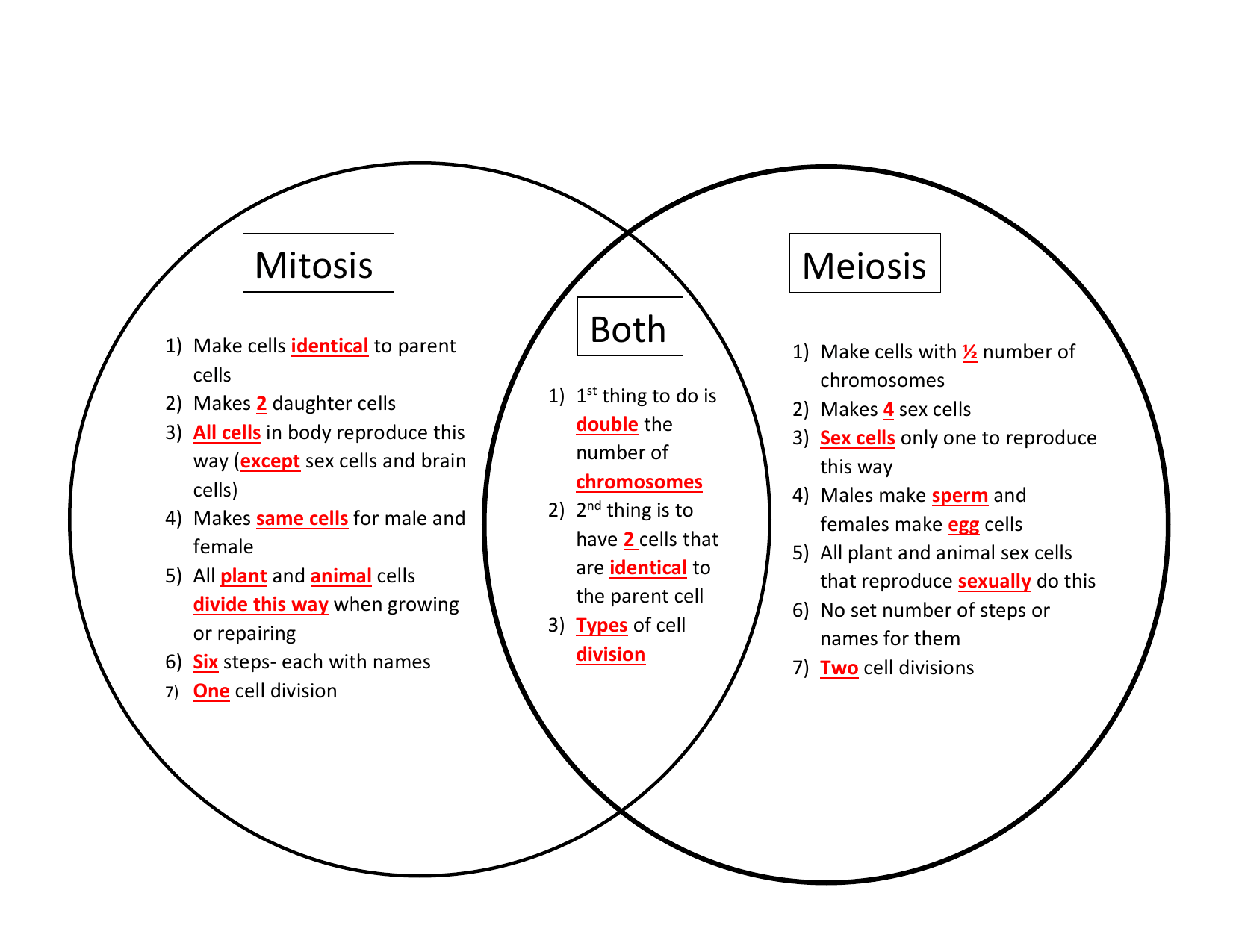 Comparing Mitosis And Meiosis Worksheet Answer Key