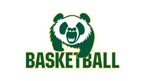 Image result for alberta pandas basketball