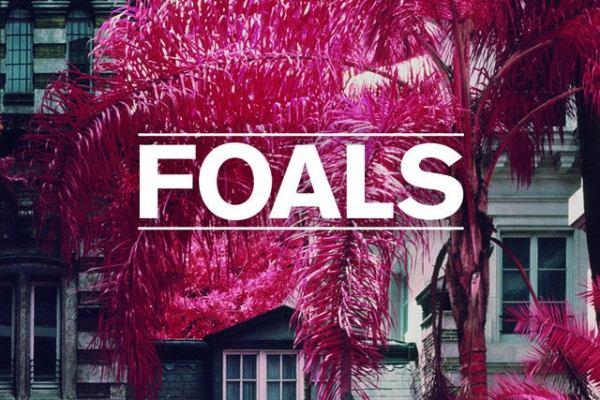 Foals Best Ever Albums